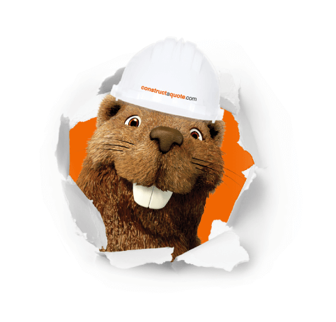 Billy the beaver constructaquote.com