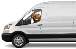 Billie the beaver driving a van